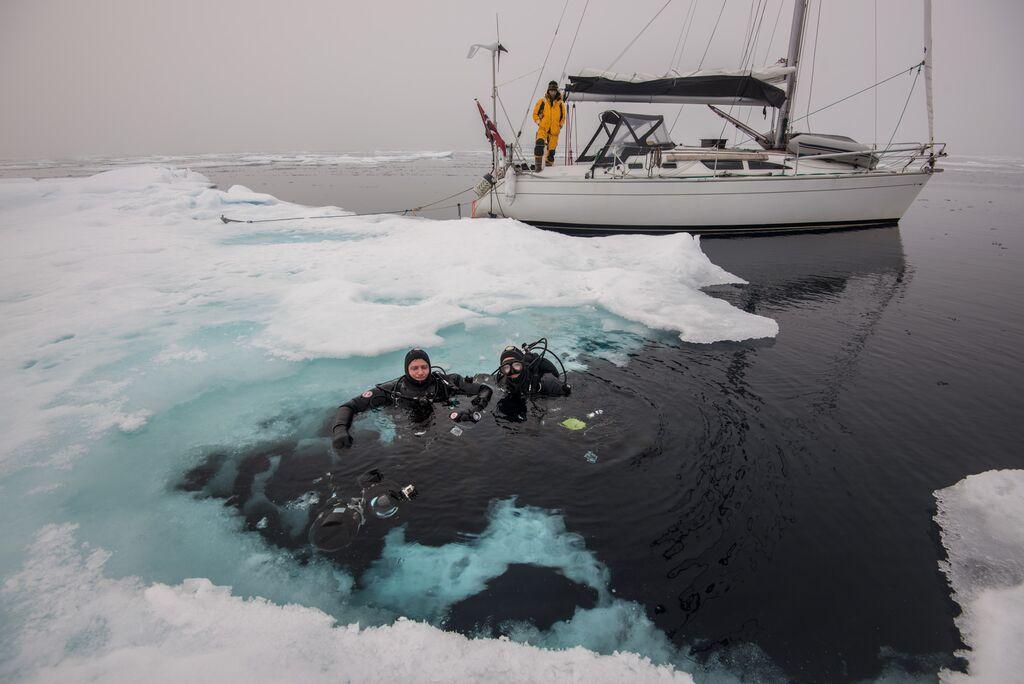 diving at 81